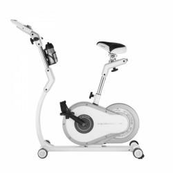 Rower treningowy Daum Vita 4