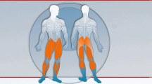 Training: Beinmuskulatur