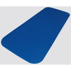 AIREX gymnastics mat Coronita