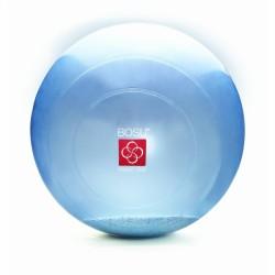 Piłka BOSU Ballast Ball