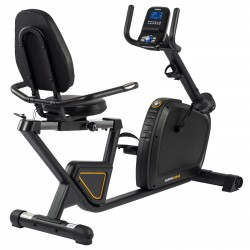 Darwin Fitness Recumbent Bike RB40