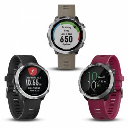 Montre connectée Garmin Forerunner 645