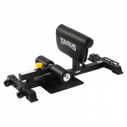 Taurus Sissy Squat Trainer