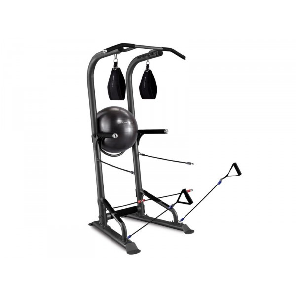 Bodycraft Lifetree T3 Power Tower