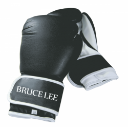 Bruce Lee Allround Boxing Gloves 10oz