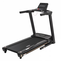 Darwin treadmill TM40