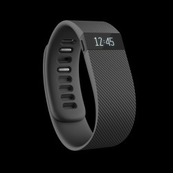 Fitbit Activity Tracker Charge