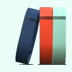 Pack d'accessoires pour le bracelet FitBit Flex