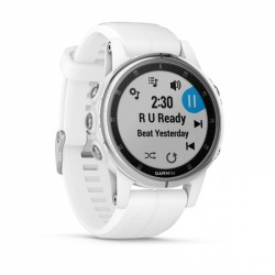 Garmin Fenix 5S Plus Sapphire purchase online now