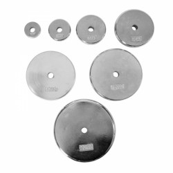Taurus chrome weight plates