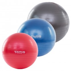 Taurus Gym Bal anti-burst