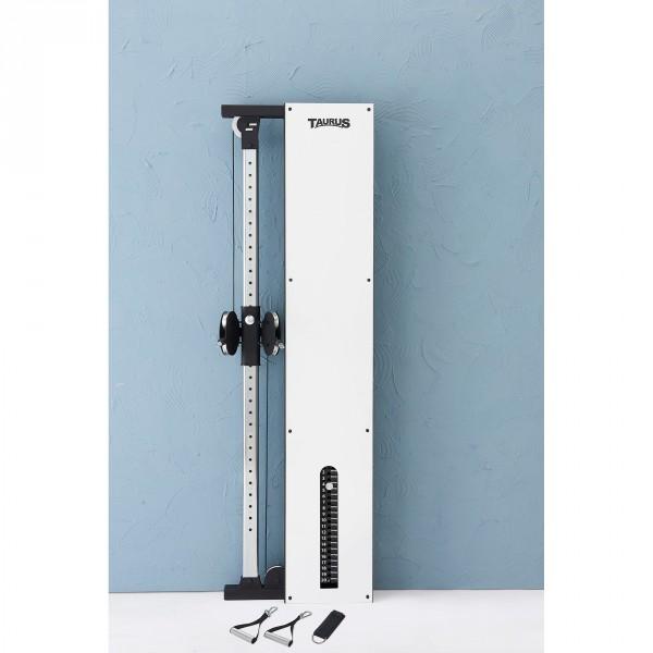 Taurus Design Line Single Pulley Graphite 90 kg