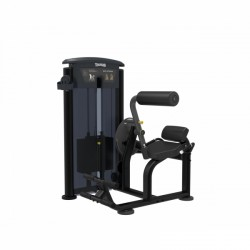 Taurus Back Extension IT95 (200lbs)