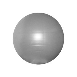 Swiss ball Togu ABS